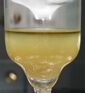 Absinthe Louching In Tarragona Glass